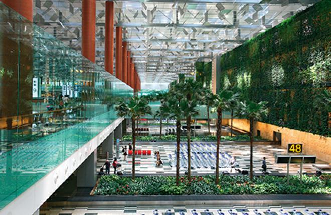 Аэропорт Чанъи старается быть привлекательным для пассажиров. В «Очарованном саду» в транзитной зоне терминала 2 растут более 1000 растений 50 видов, а объем пруда с рыбами составляет 22000 л