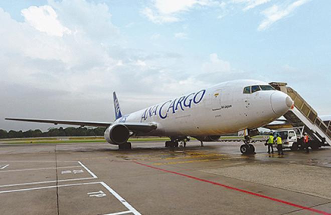 Перевозки груза в багажных отсеках пассажирских самолетов авиакомпании AirAsia за последние несколько лет значительно выросли