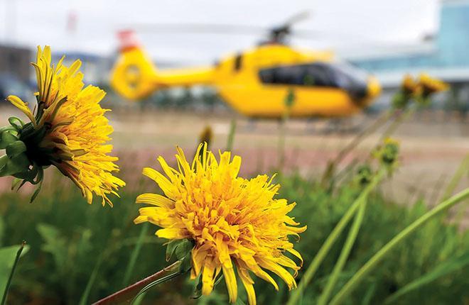 Конструкции большинства вертолетов таковы, что в случае даже небольшой аварии страховщики вынуждены признавать полную гибель машины :: Александр Мишин / Transport-Photo.com