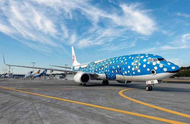 Самолет Boeing 737-800 авиакомпании JTA, покрашенная под китовую акулу