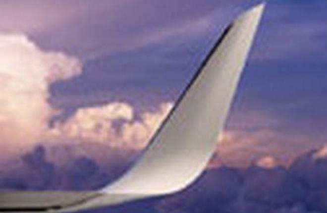 Крылышки для крыла