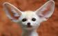 Аватар пользователя UPSss2003